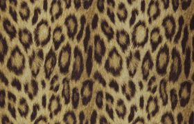 JUNGLE CLUB TAPETA PANTHERA Gold 08